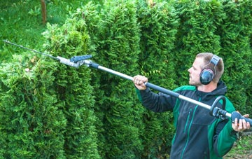 Sevenoaks Weald hedge trimming costs