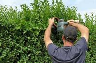 free Sevenoaks Weald hedge trimming quotes